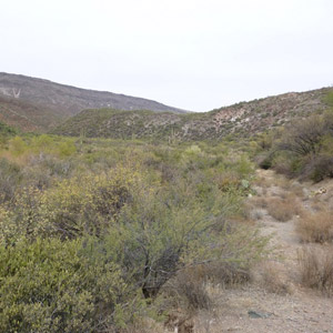 Photograph of Cave Creek