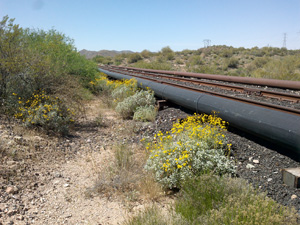 Photo of railway with above ground water pipeline