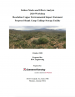 Thumbnail image of Failure Modes and Effects Analysis 2020 Workshop: Resolution Copper Environmental Impact Statement, Proposed Skunk Camp Tailings Storage Facility report cover