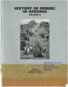 Thumbnail image of The History of Mining at Superior book cover