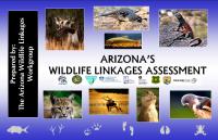 Thumbnail image of Arizona's Wildlife Linkages Assessment webpage