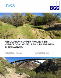 Thumbnail image of Hydrologic Model Results for DEIS Alternatives document cover