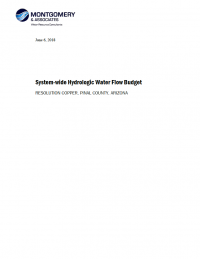 Thumbnail image of System-wide Hydrologic Water Flow Budget document cover