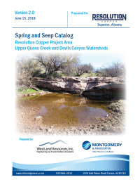 Thumbnail image of the Spring and Seep Catalog - June 2018