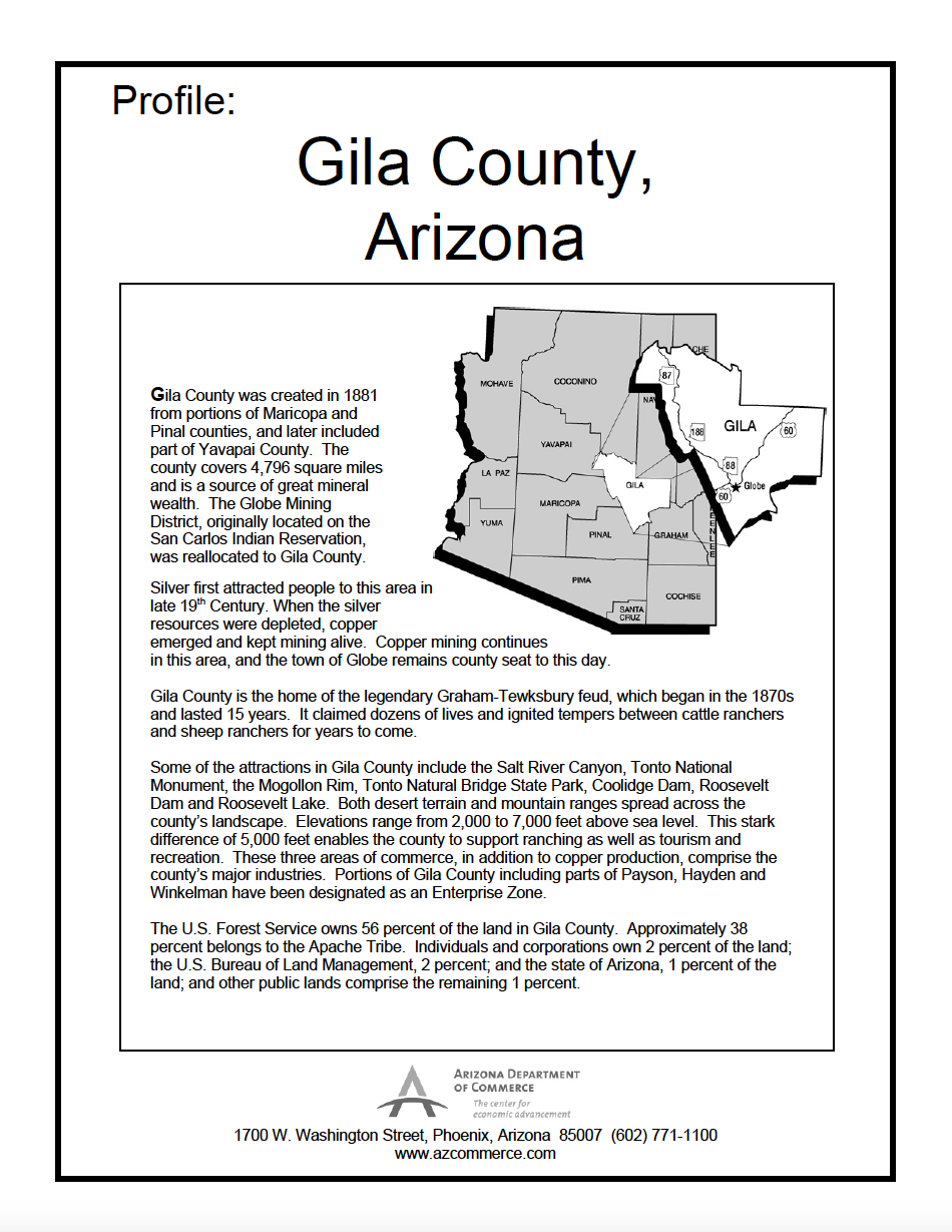 Thumbnail image of document cover: Community Profile - Gila County