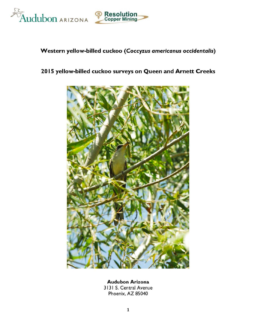 Thumbnail image of document cover: Western Yellow-Billed Cuckoo (Coccyzus americanus occidentalis): 2015 Yellow-Billed Cuckoo Surveys on Queen and Arnett Creeks