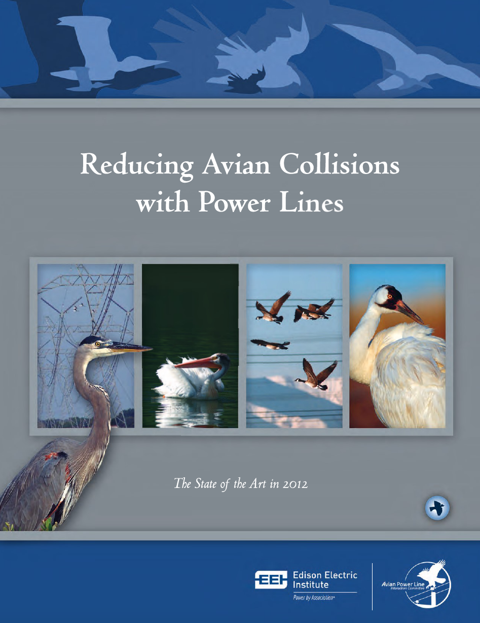 Thumbnail image of document cover: Reducing Avian Collisions with Power Lines: The State of the Art in 2012