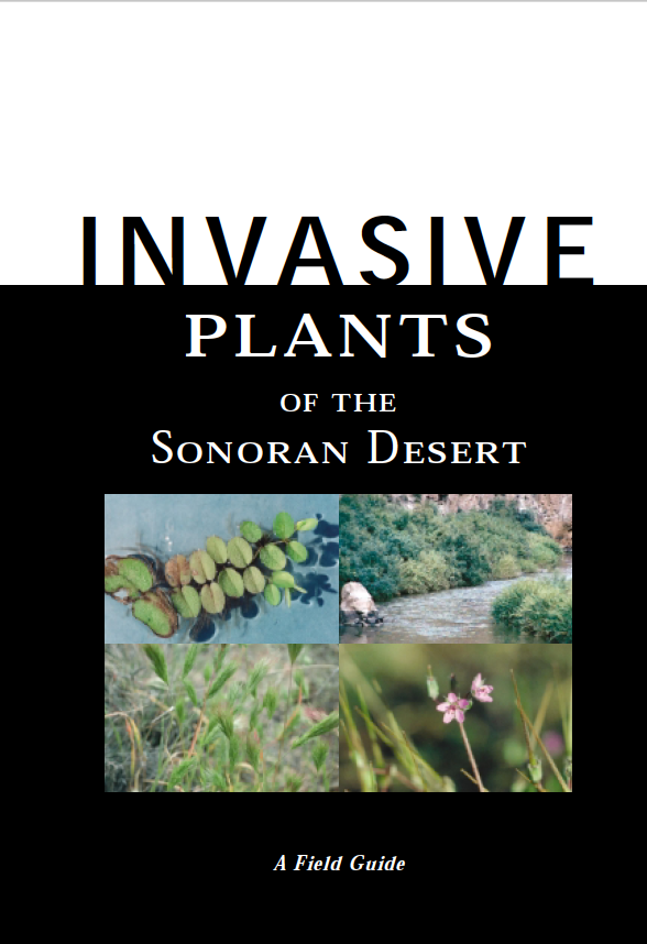 Thumbnail image of document cover: Invasive Plants of the Sonoran Desert: A Field Guide