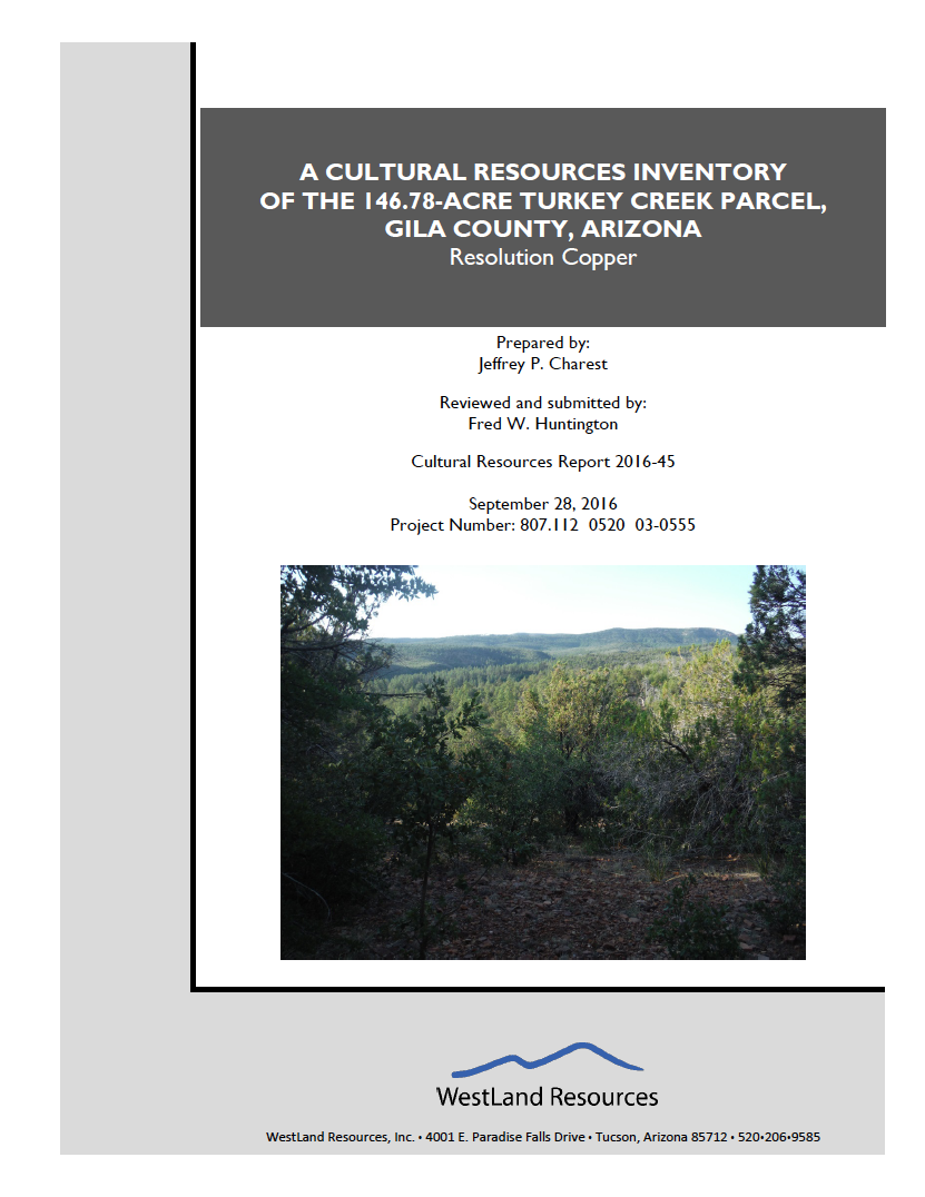 Thumbnail image of document cover: A Cultural Resources Inventory of the 146.78-Acre Turkey Creek Parcel, Gila County, Arizona