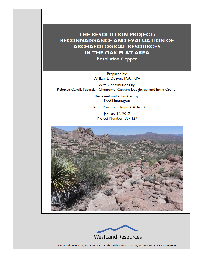 Thumbnail image of document cover: The Resolution Project: Reconnaissance and Evaluation of Archaeological Resources in the Oak Flat Area