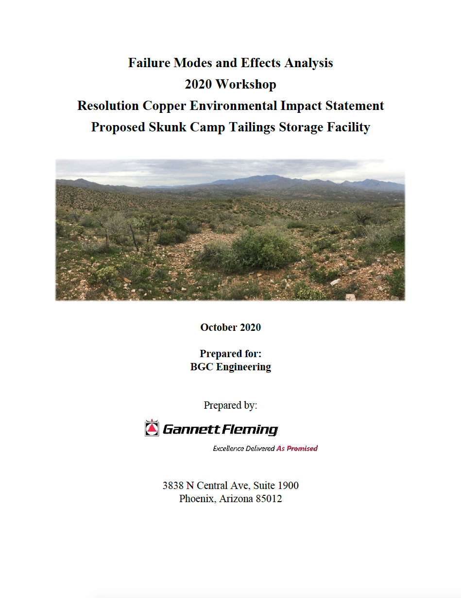 Thumbnail image of document cover: Failure Modes and Effects Analysis 2020 Workshop: Resolution Copper Environmental Impact Statement, Proposed Skunk Camp Tailings Storage Facility