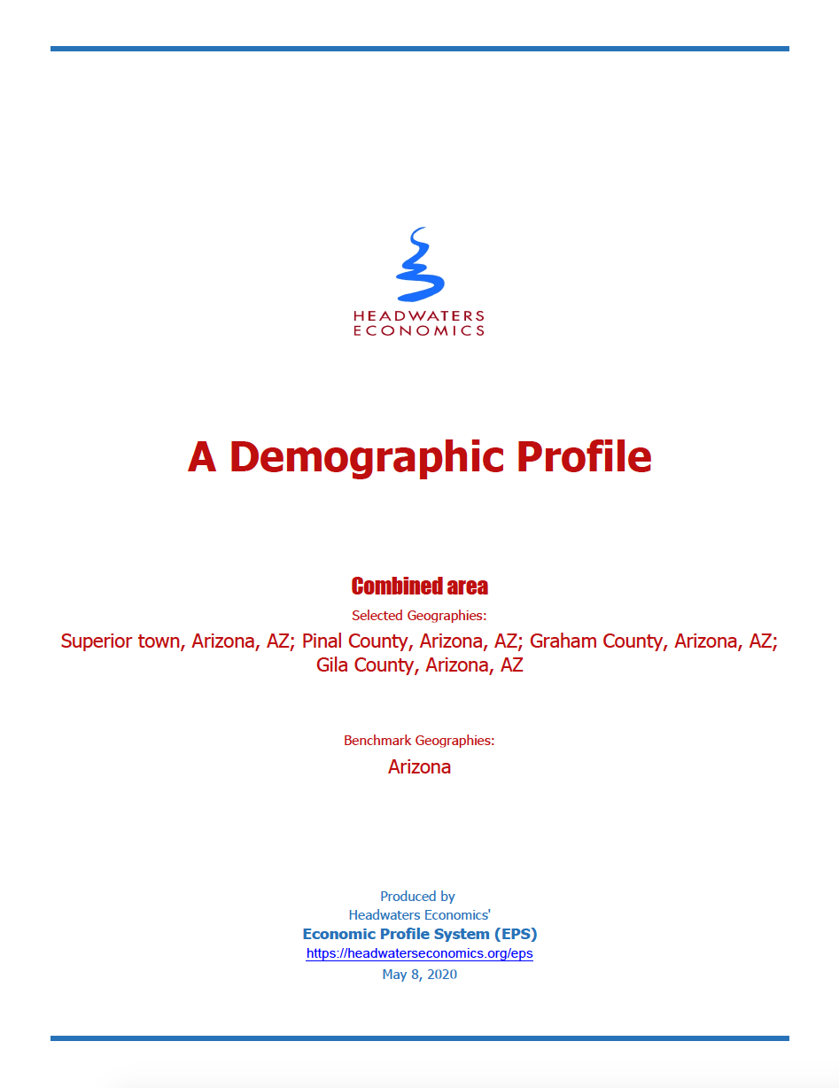 Thumbnail image of document cover: A Demographic Profile: Superior Town