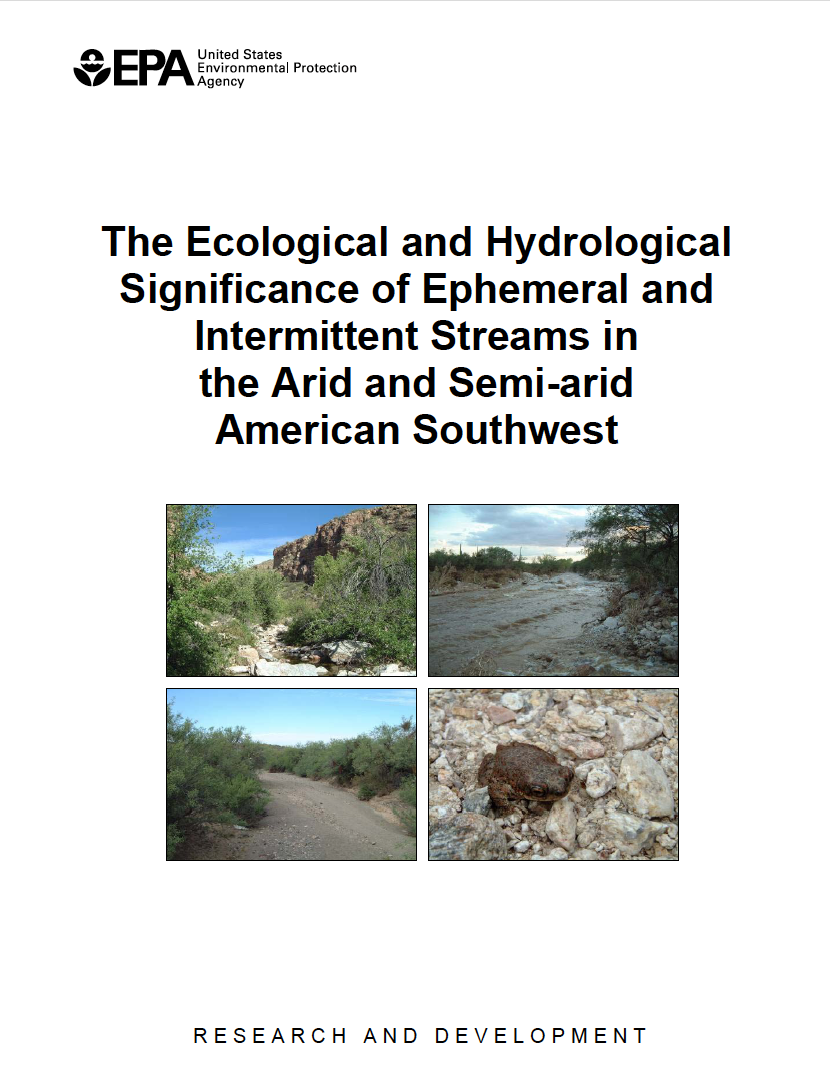 Thumbnail image of document cover: The Ecological and Hydrological Significance of Ephemeral and Intermittent Streams in the Arid and Semi-arid American Southwest