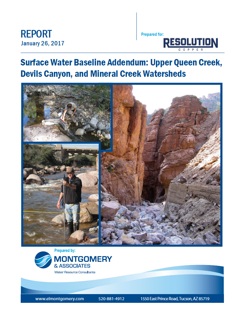 Thumbnail image of document cover: Surface Water Baseline Addendum: Upper Queen Creek, Devils Canyon, and Mineral Creek Watersheds