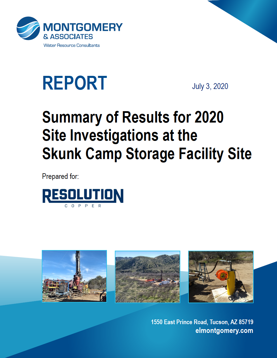 Thumbnail image of document cover: Summary of Results for 2020 Site Investigations at the Skunk Camp Storage Facility