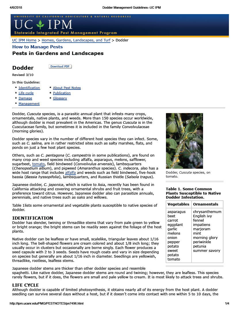Thumbnail image of document cover: Pests in Gardens and Landscapes: Dodder Management Guidelines