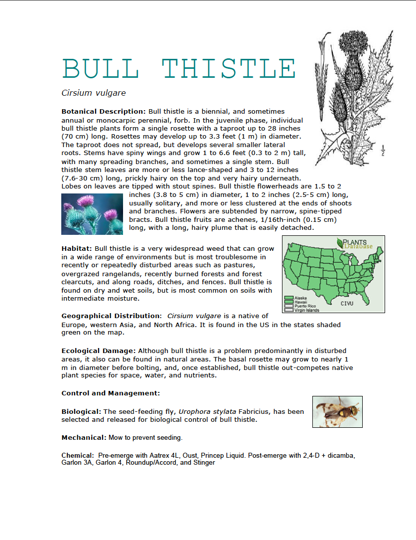 Thumbnail image of document cover: Plant Fact Sheets