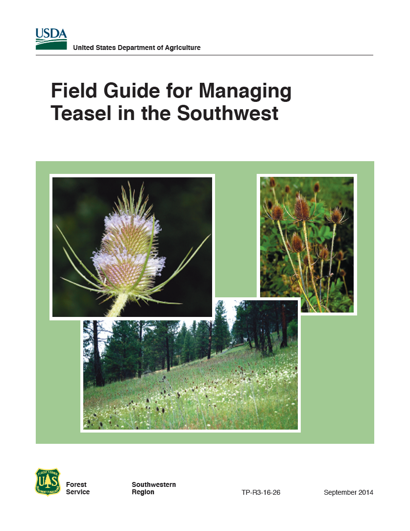 Thumbnail image of document cover: Field Guide for Managing Teasel in the Southwest