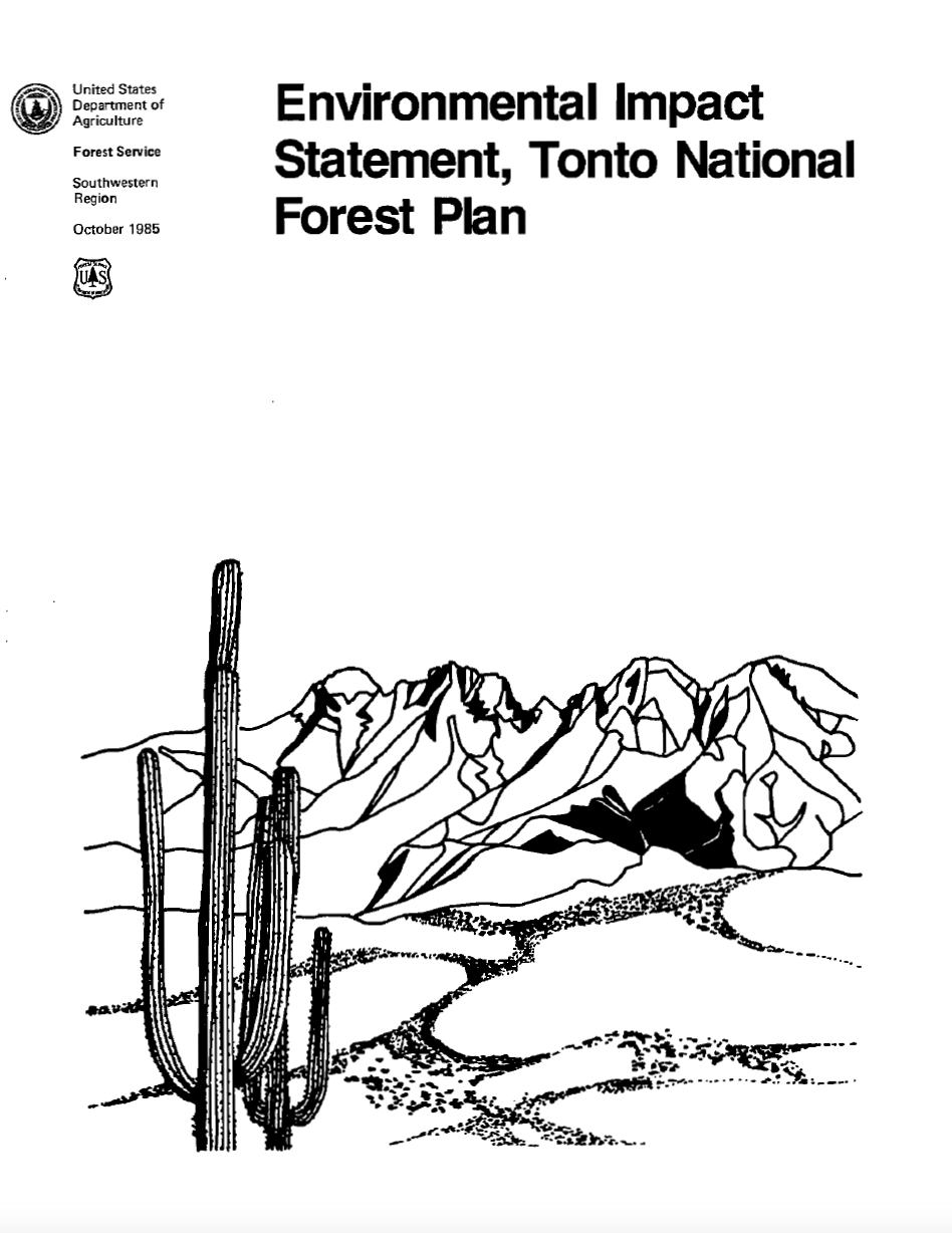 Thumbnail image of document cover: Environmental Impact Statement Tonto National Forest Plan
