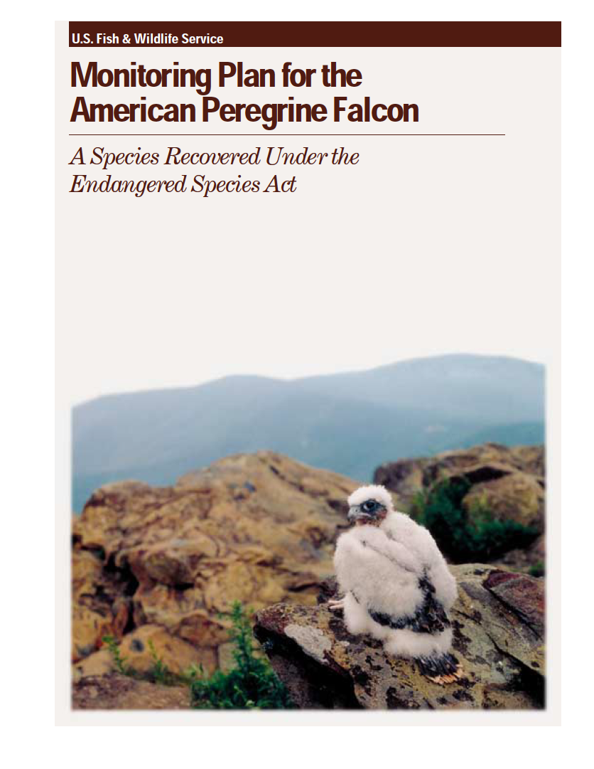 Thumbnail image of document cover: Monitoring Plan for the American Peregrine Falcon: A Species Recovered Under the Endangered Species Act