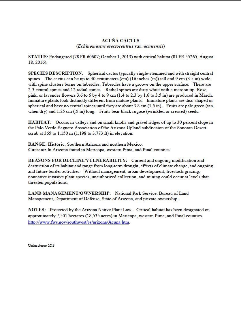 Thumbnail image of document cover: Acuña Cactus (Echinomastus erectocentras var. acunensis): General Species Information