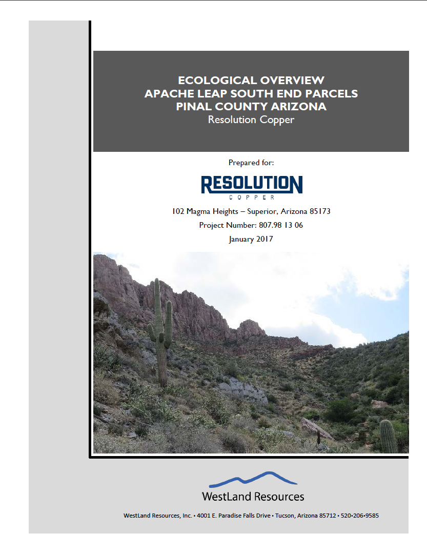 Thumbnail image of document cover: Ecological Overview Apache Leap South End Parcels