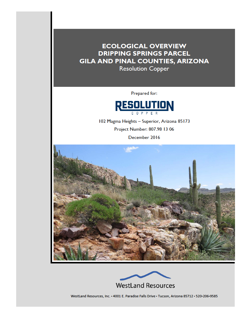Thumbnail image of document cover: Ecological Overview: Dripping Springs Parcel, Gila and Pinal Counties, Arizona