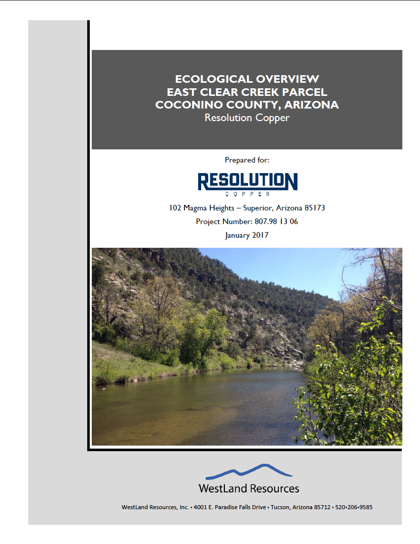Thumbnail image of document cover: Ecological Overview East Clear Creek Parcel