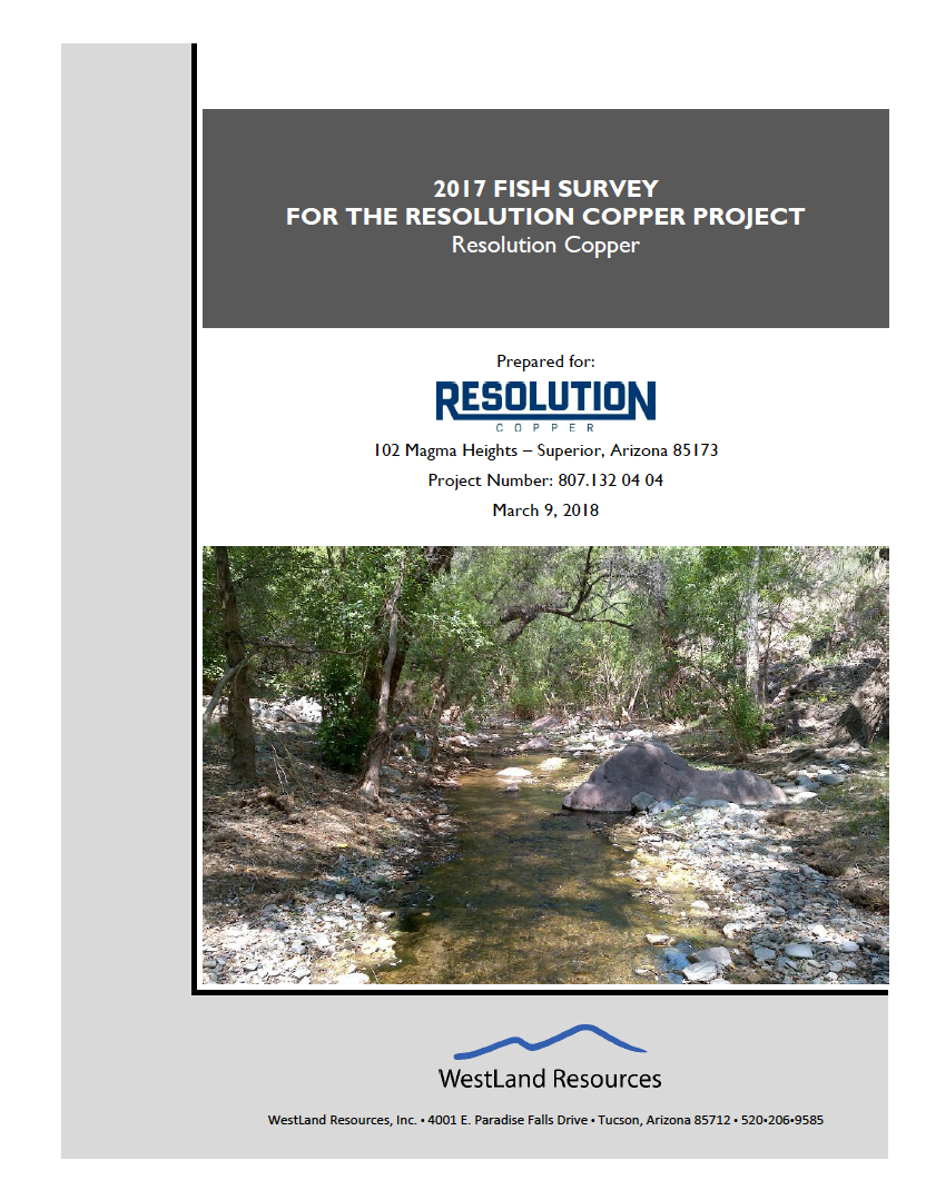 Thumbnail image of document cover: 2017 Fish Survey for the Resolution Copper Project