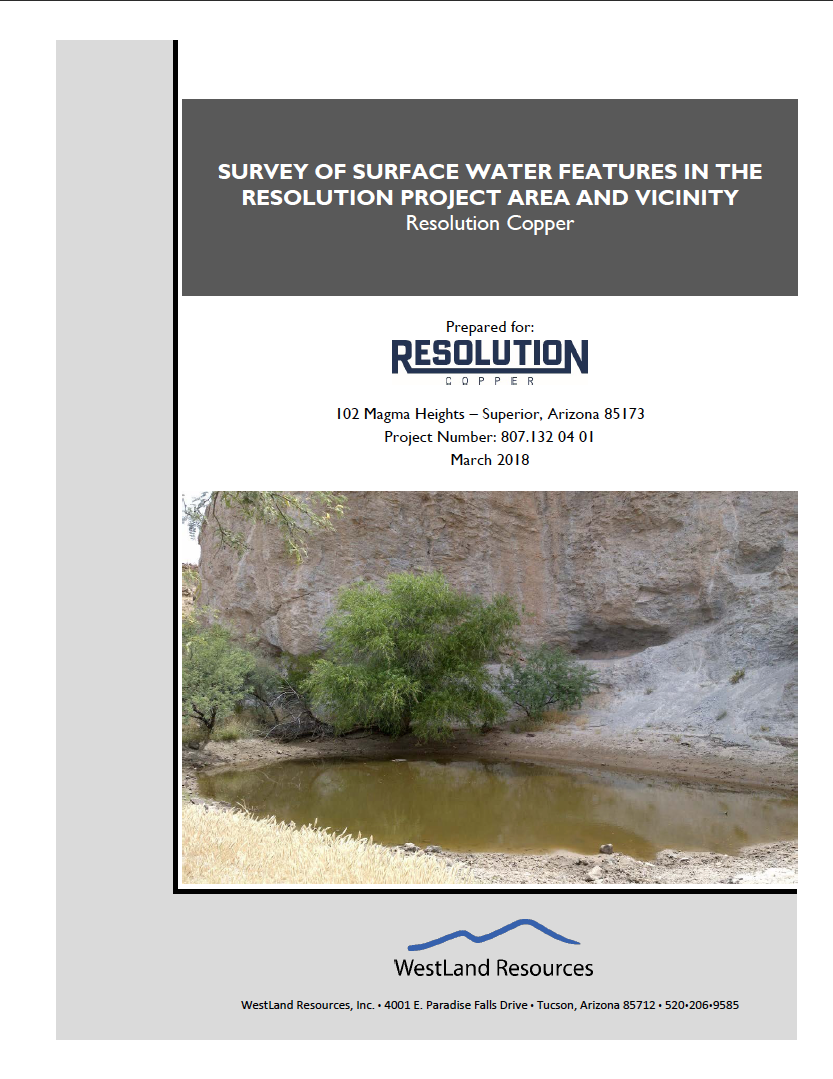 Thumbnail image of document cover: Survey of Surface Water Features in the Resolution Project Area and Vicinity