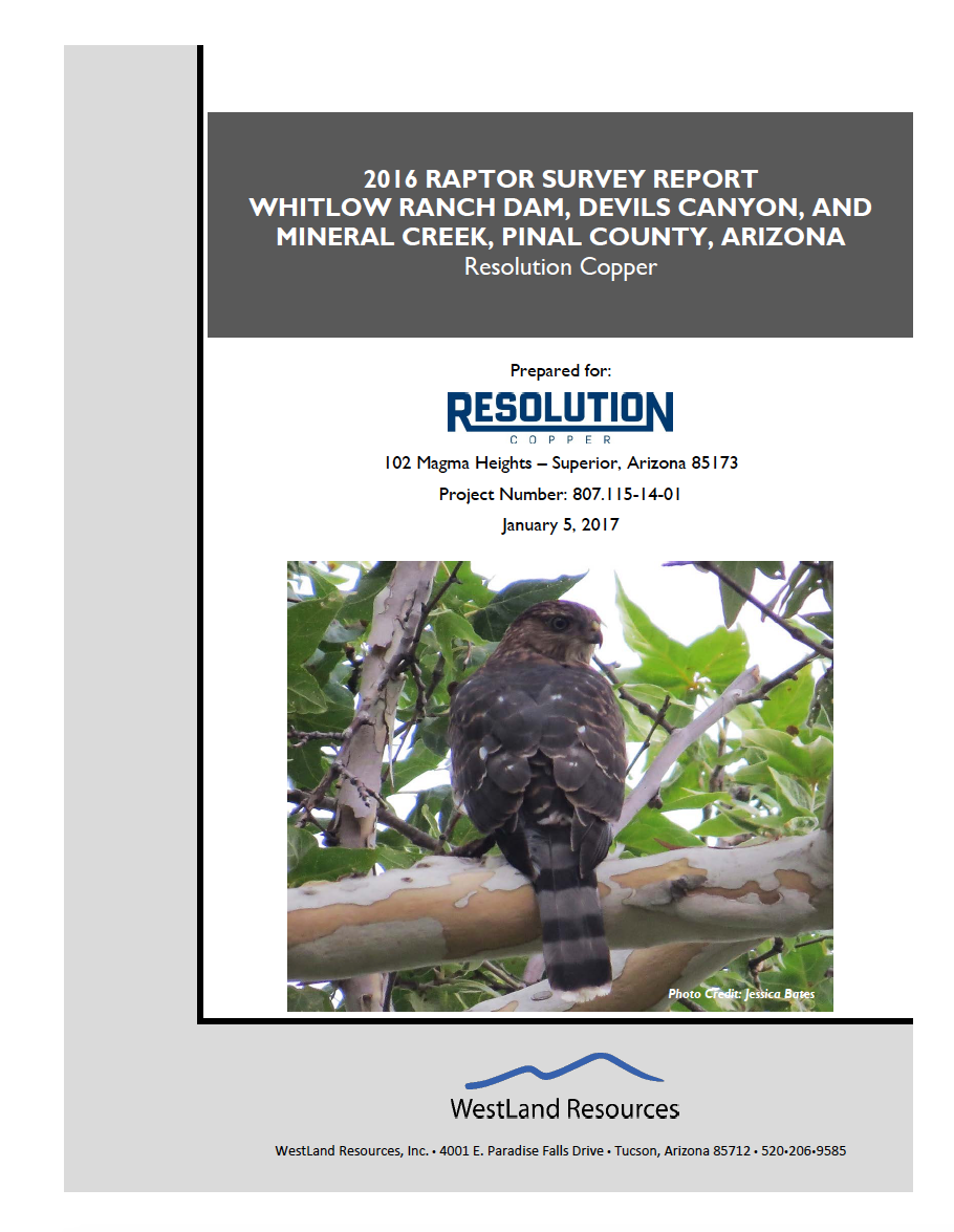 Thumbnail image of document cover: 2016 Raptor Survey Report Whitlow Ranch Dam, Devils Canyon, and Mineral Creek, Pinal County, Arizona