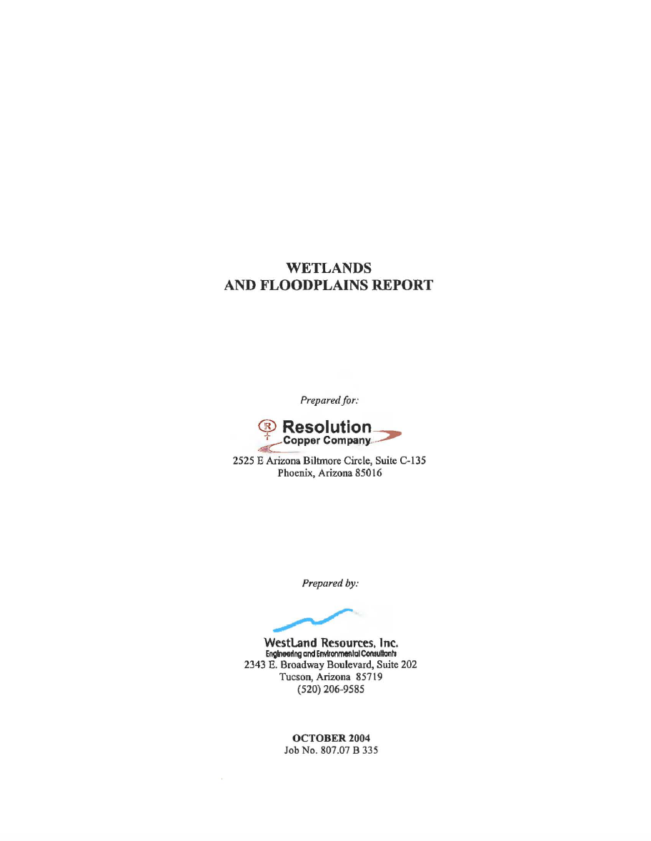 Thumbnail image of document cover: Wetlands and Floodplains Report