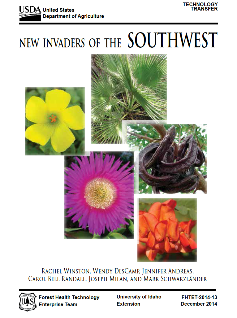 Thumbnail image of document cover: New Invaders of the Southwest